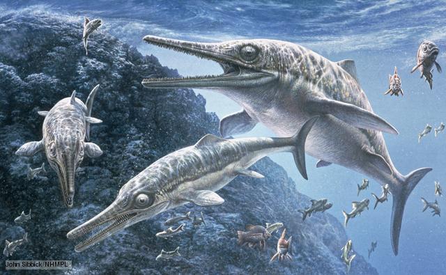 ichthyosaur_1.jpg