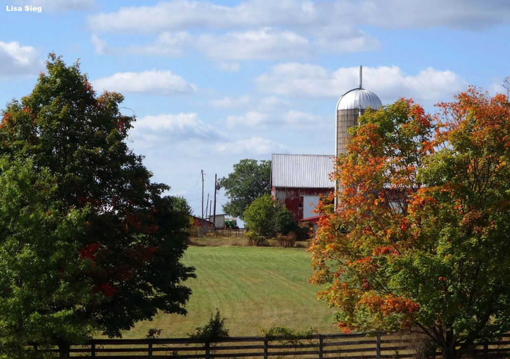 Red Barn Indian Summer