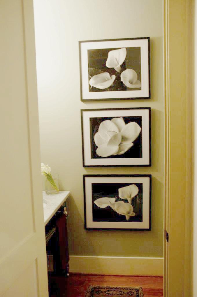 kim cesare residence portfolio 084.jpg