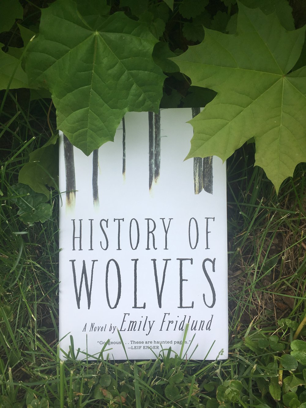 History of Wolves  / Atlantic Monthly Press