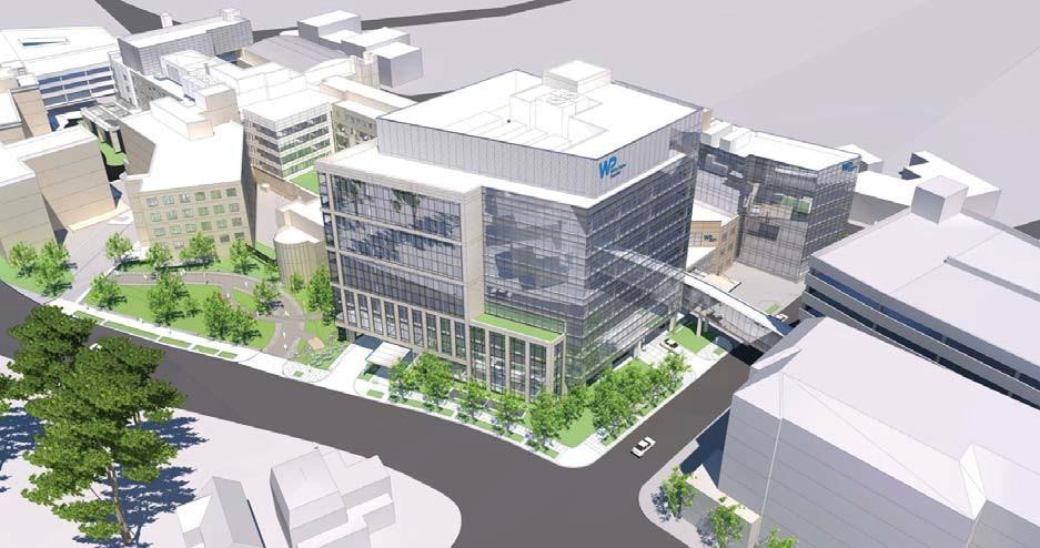 White Plains Hospital - Modernization 4
