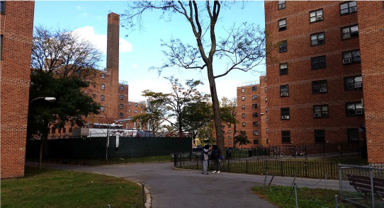 NYCHA - Gravesend Houses