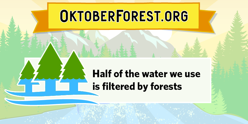 Oforest - Half of the water we use.jpg