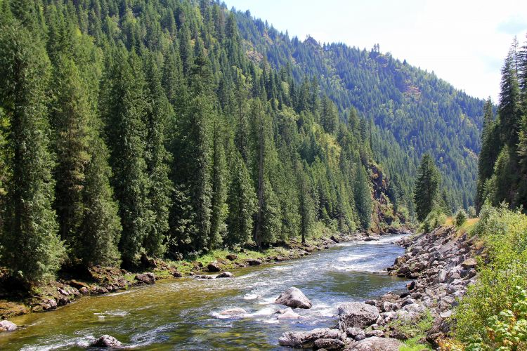 Clearwater-NF_Lochsa-River_USFS.jpg