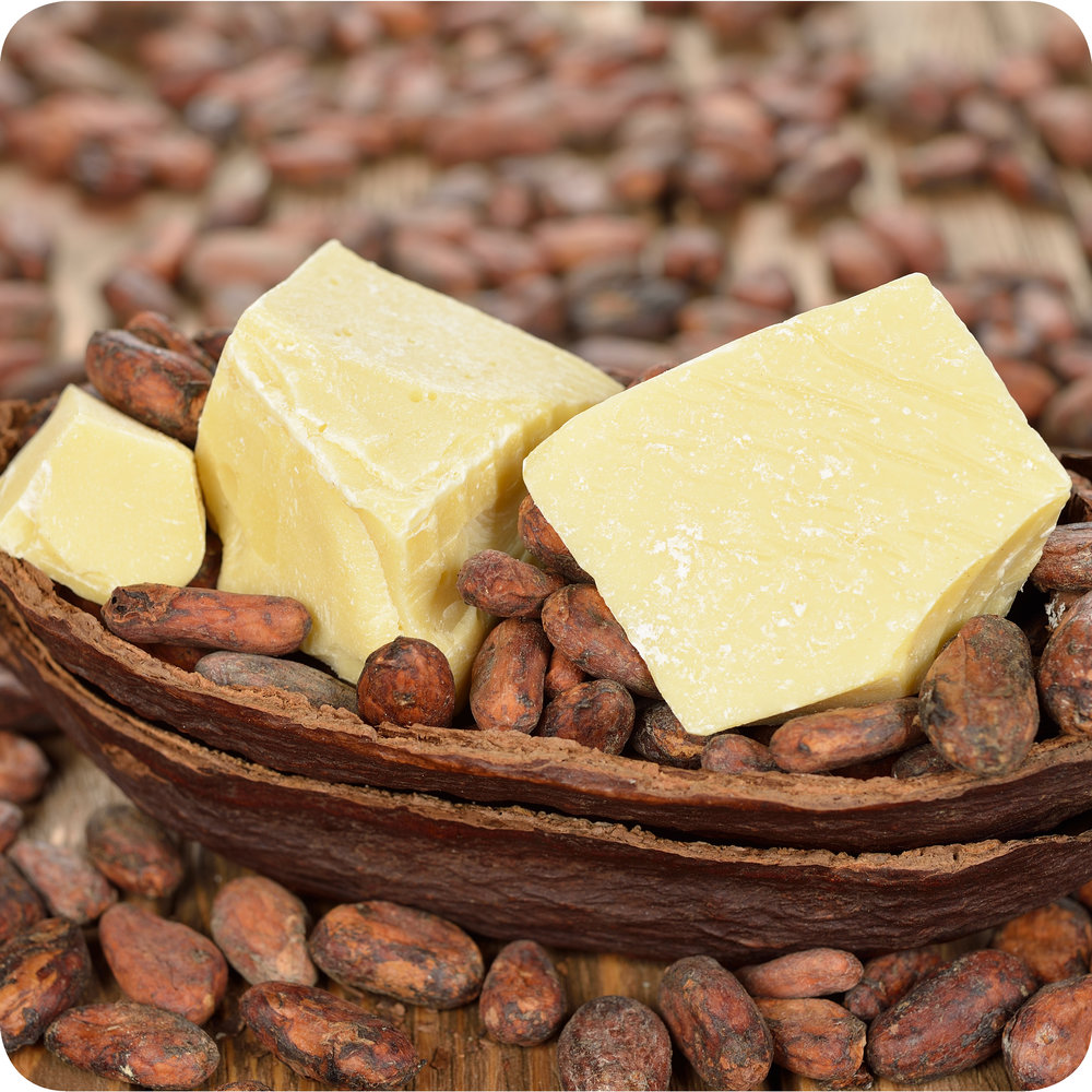 Cocoa butter among dried cocoa beans.