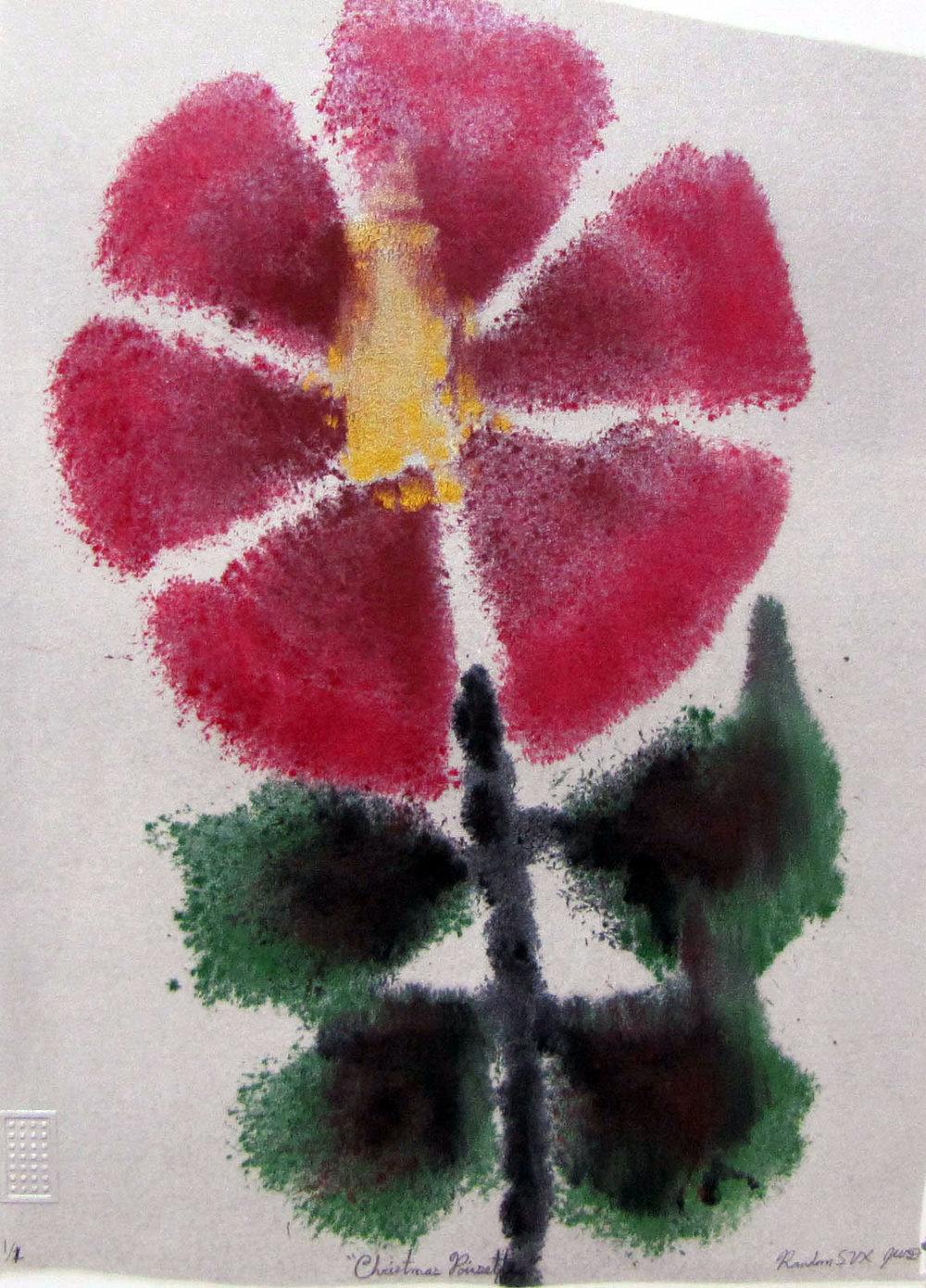 Christmas Poinsettia- Jacob Doerr.jpg