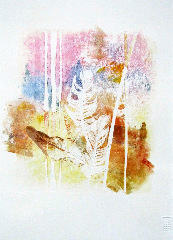 Feather- Pheobe Sealy.jpg