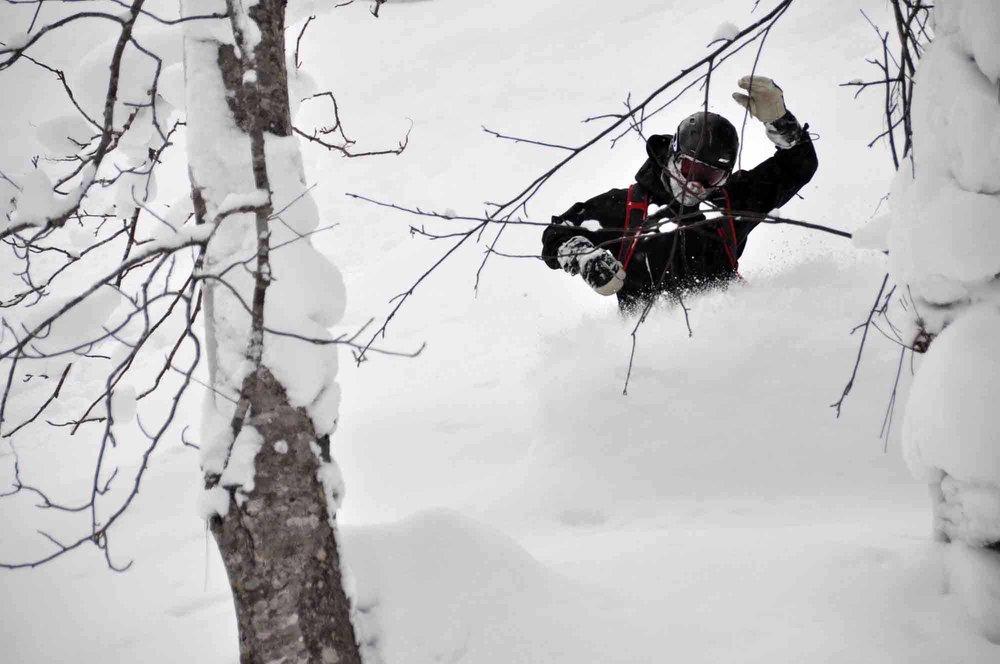 Ski-Japan-10.jpg