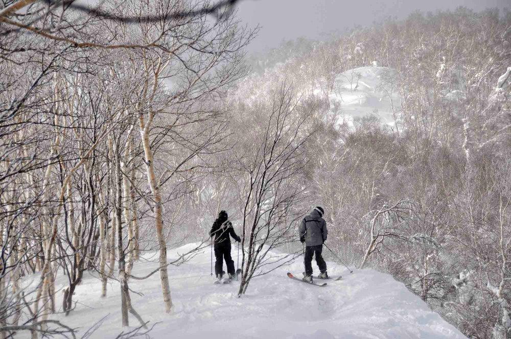 Ski-Japan-11.jpg