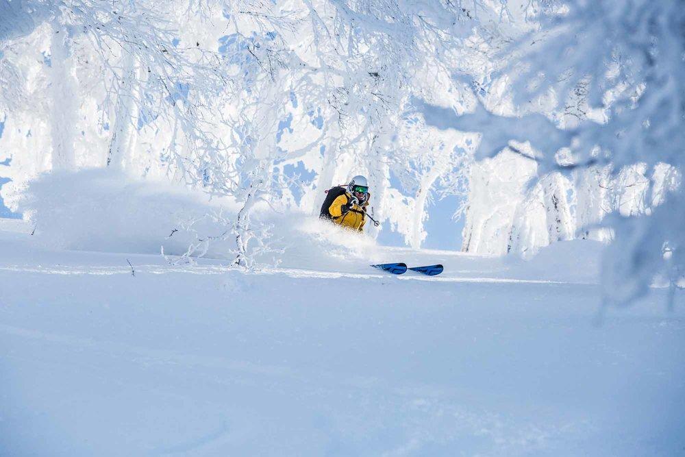 Ski-Japan-13.jpg