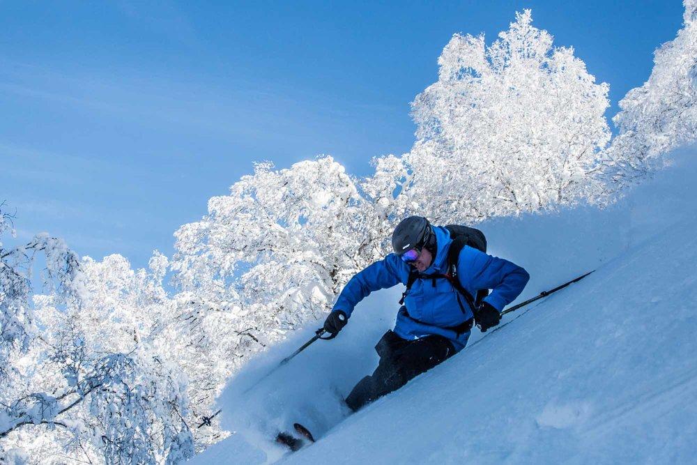 Ski-Japan-16.jpg