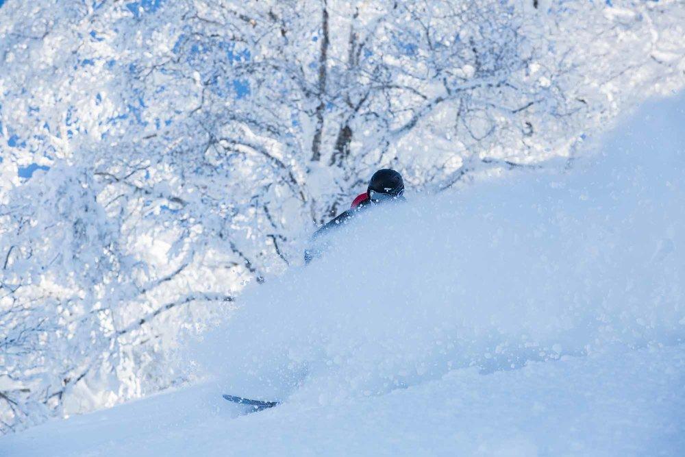 Ski-Japan-17.jpg