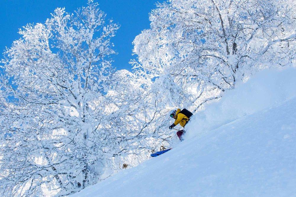 Ski-Japan-18.jpg