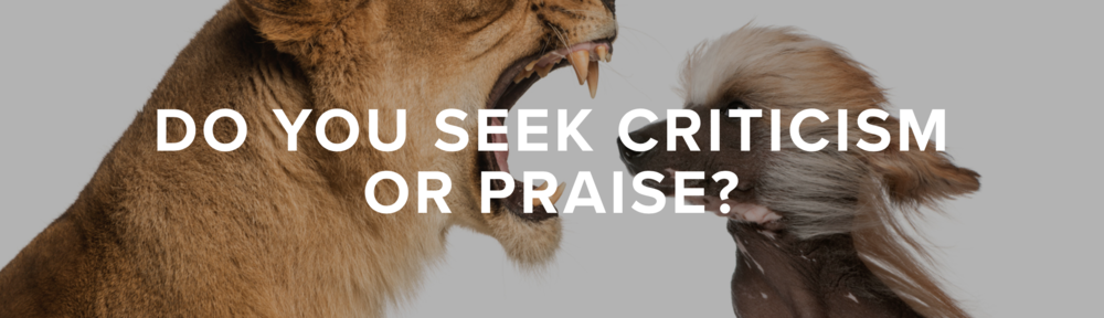 Do you seek criticism or praise?