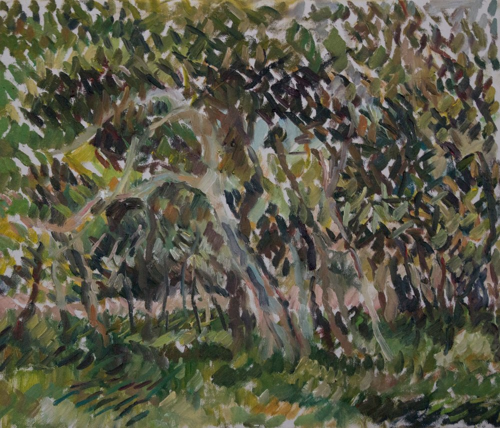 "Giardini I , 18"" x 21.5"", oil on canvas, 2018"