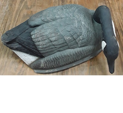 $175 a dozen   Large Canada Goose Shells  Rank: 8/10