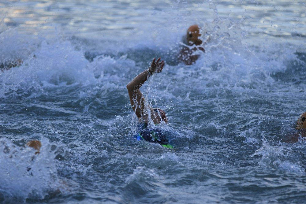 ale swim.jpg