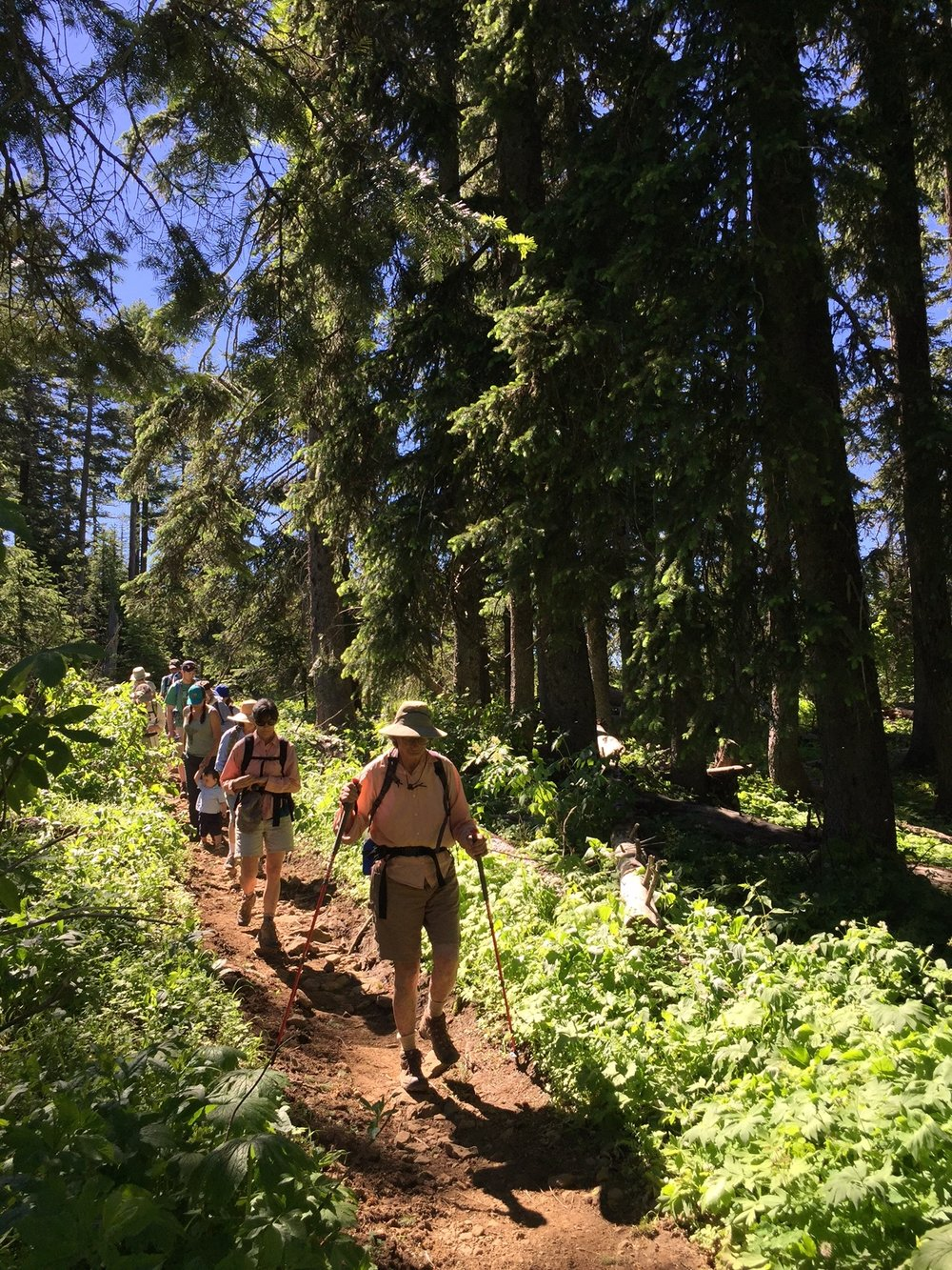 Blue Mountains Conservancy - Umatilla ridge hike