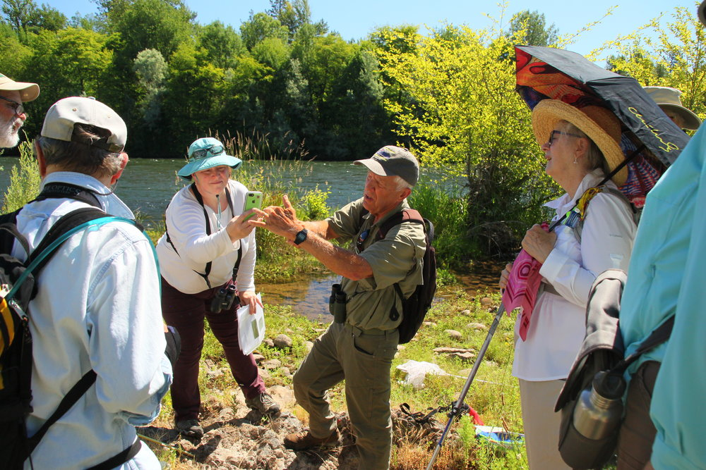 Southern Oregon Land Conservancy - Dragonfly walk
