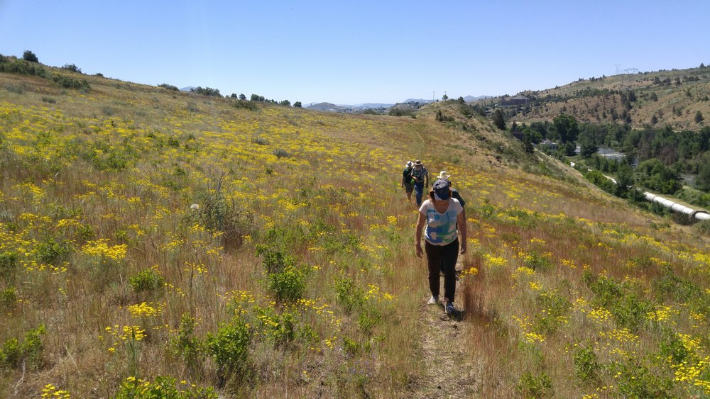 Klamath Lake Land Trust - Conger Heights hike