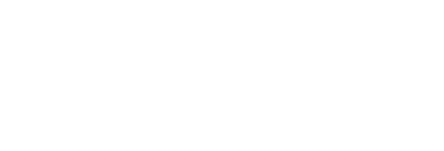 Dynamic Pricing Partners