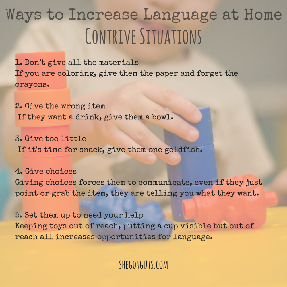20 ways to increase language in your home contrive situations- shegotguts.com (1).png