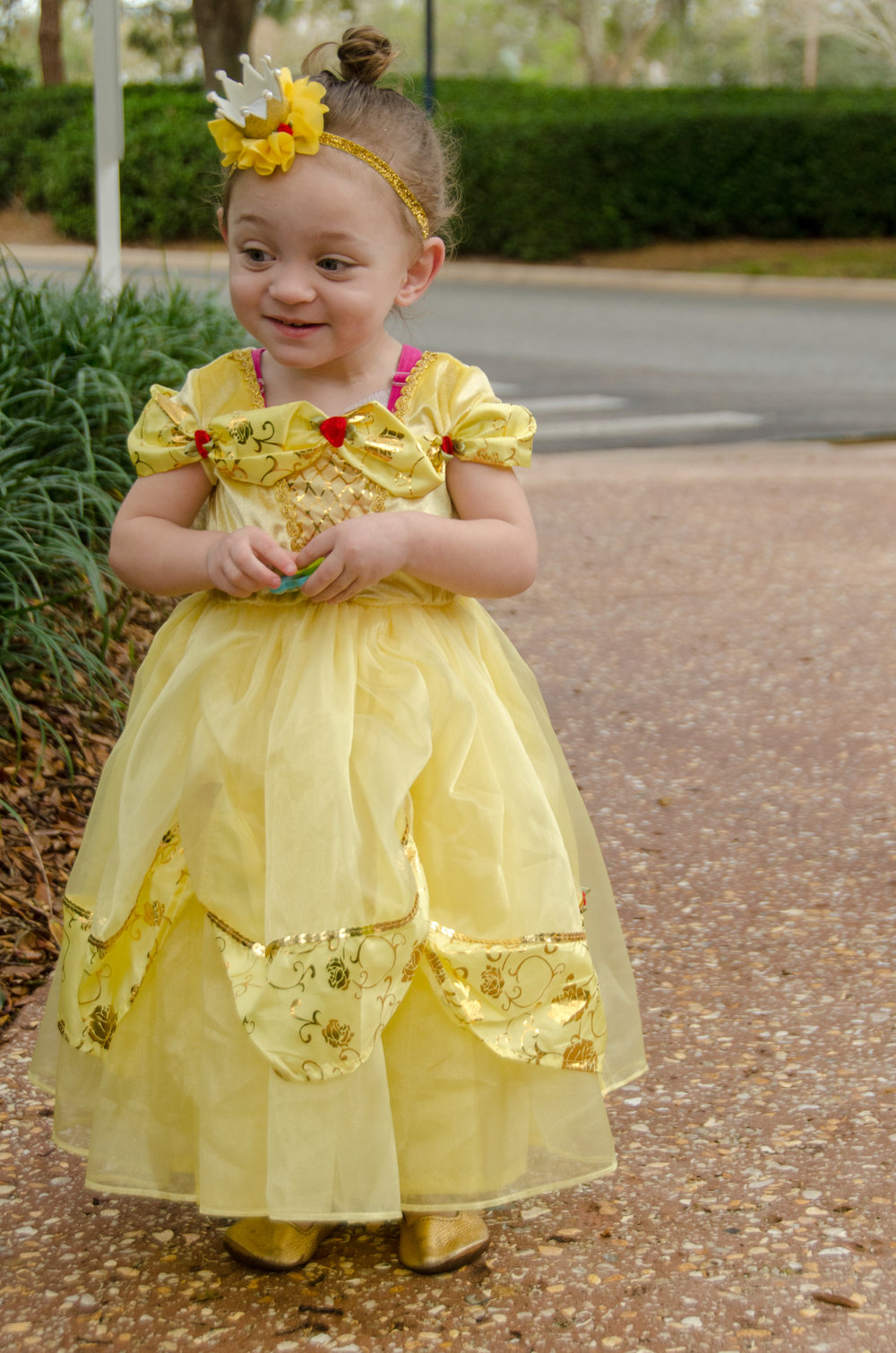 tips for traveling to disney with medical needs - she got guts