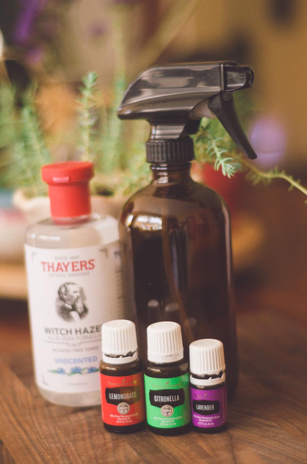DIY Bug Spray - Non Toxic & Safe for Kids - She Got Guts