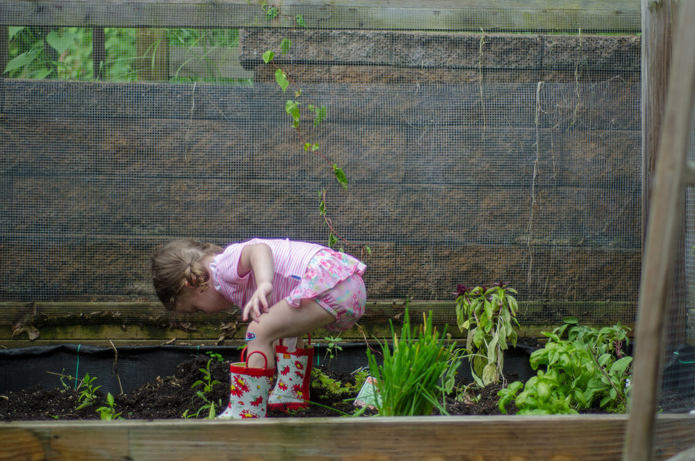 reasons+to+garden+with+your+kids+-+iplay+-+www.shegotguts.jpg