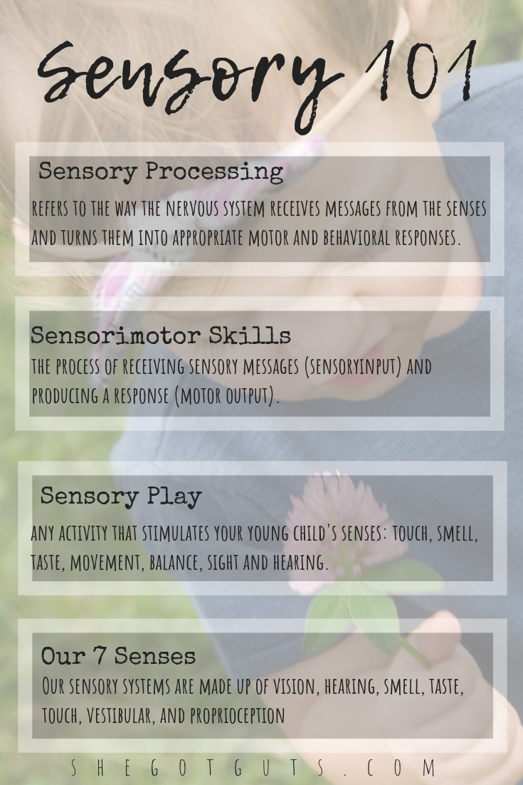 Basics of Sensory Processing by She Got Guts.png
