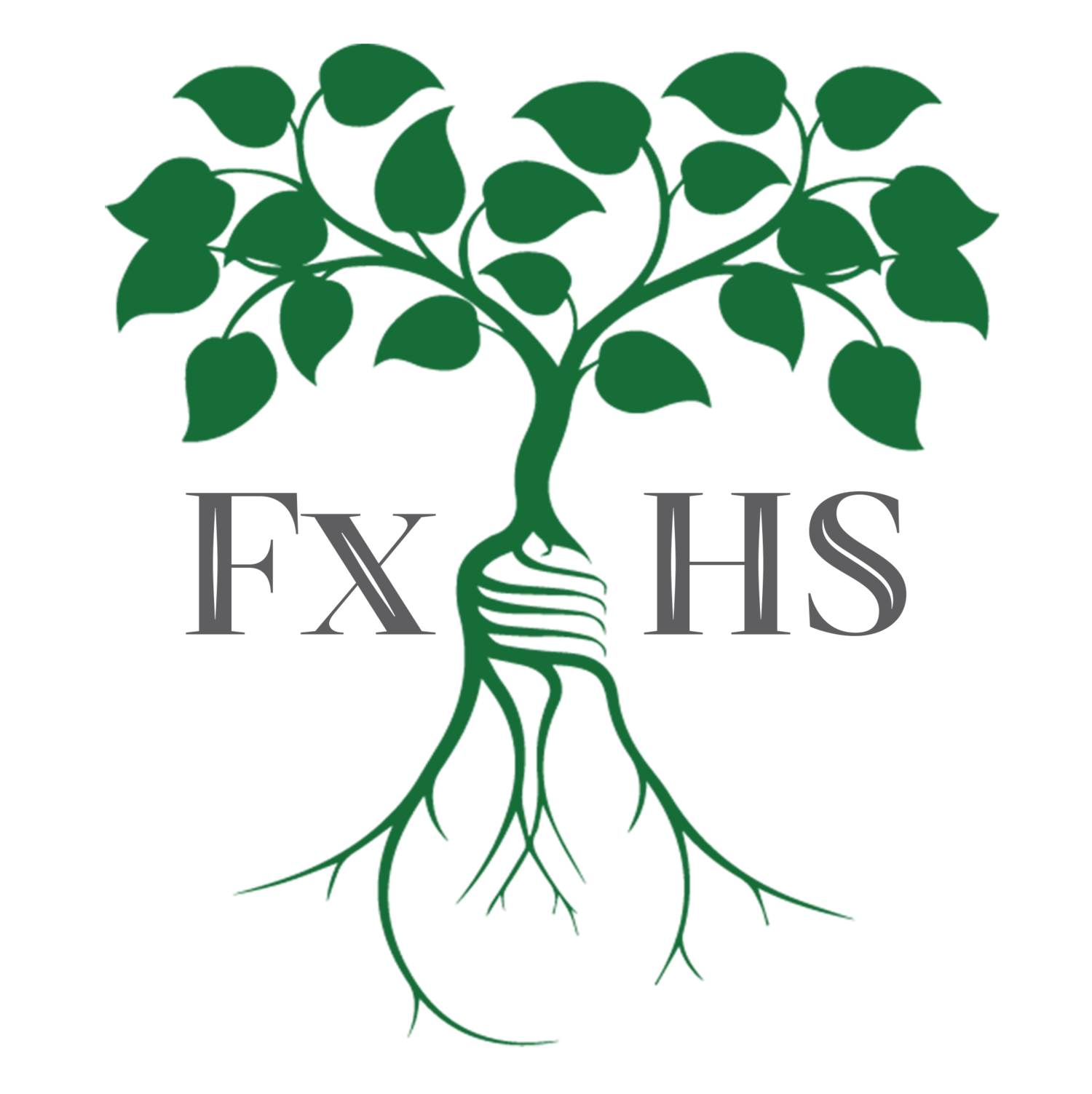 FX Health Solutions