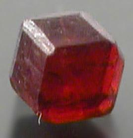 Garnet-298.jpg