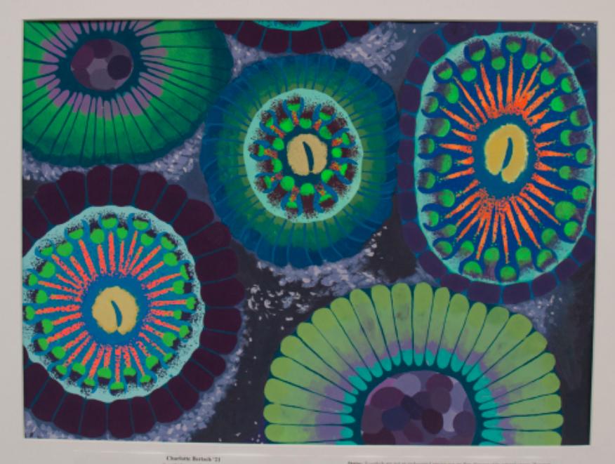 St. Mark's Coral Art