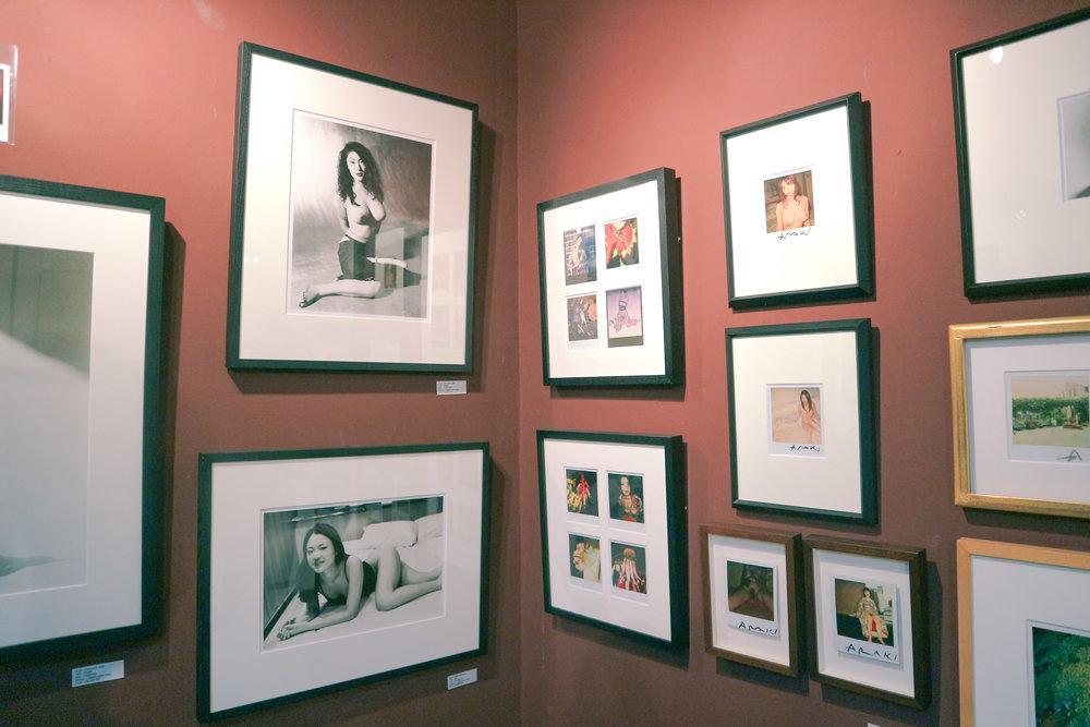 GalleryKogure-7.jpg