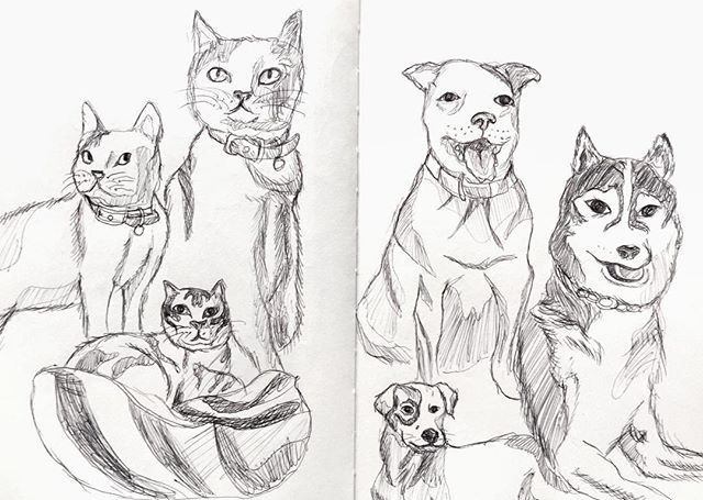 Today's sketch at the café 🐱🐶