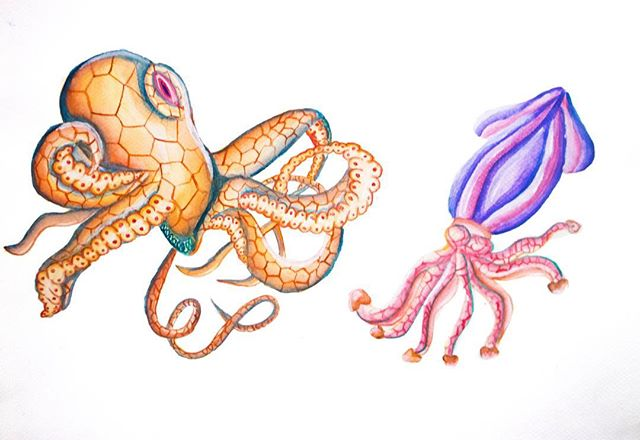 Octopussy and Squiddick #watercolor #octopus #squid