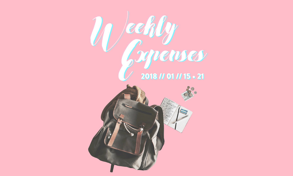 weekly expense, blog series, how much did i spend on a week