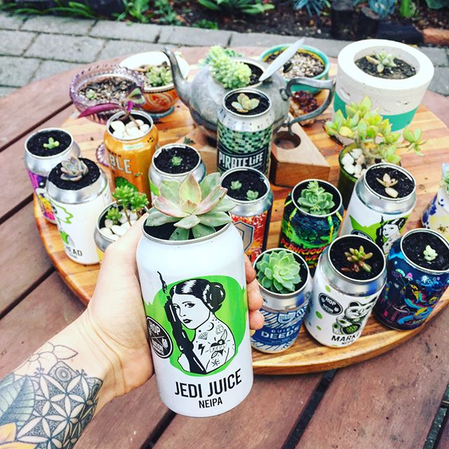 Now I have full permission to collect as many cans as I want 😜😜 .. Today I up-cycled my beer can collection 😎👌🏼 I'm feeling super stoked on these little succulent planters .. finally giving some life to my growing can collection! I just popped off the tops with a can opener and planted in succulent soil. .. @hopnationbeer my fave of yours Jedi Juice 💖 so yum I had to have 2 cans! .. @quietdeeds your juice train is just so damn good. Easily one of the best beers. Ever. .. #beergarden #girlswhodrinkbeer #succulents #upcycling #gardenofthegods #succulentgarden