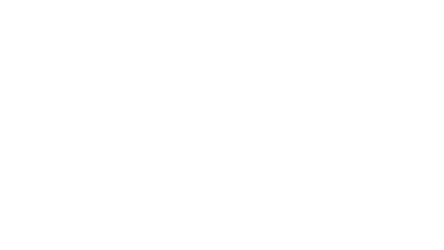 APS Flight School