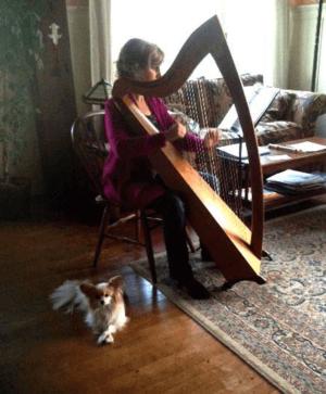 harp2(1)