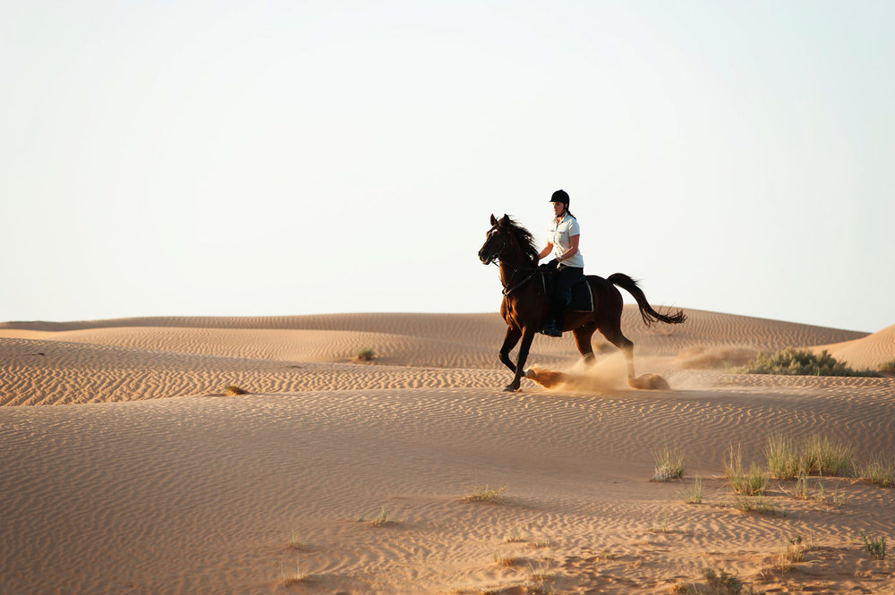 lux3081ls-99691-Horse-riding-Med.jpg