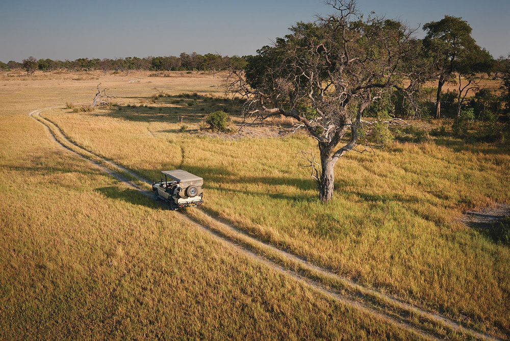 Belmond-Eagle-Island-Camp_Game-Drive.jpg