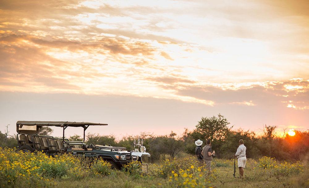 Jamala-Madikwe-Royal-Safari-Lodge_Game-Drive-Drinks-Stop.jpg