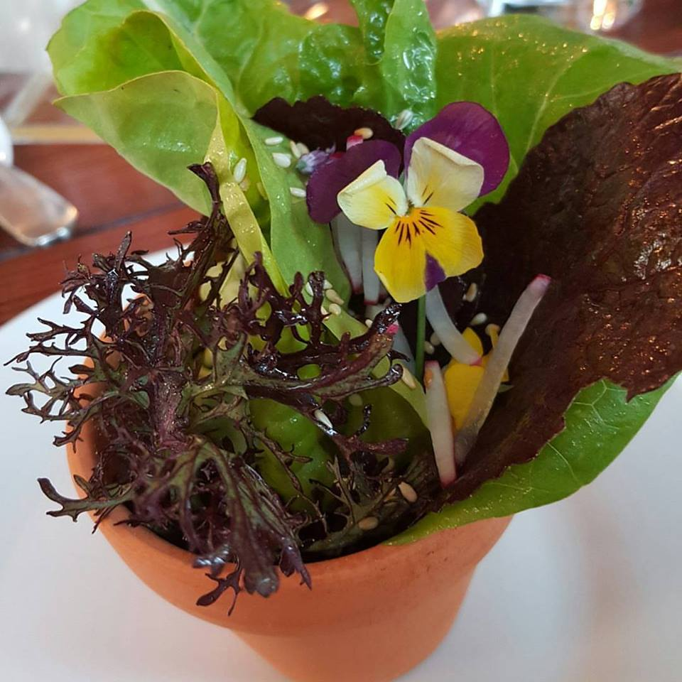 - Spring lettuces and herbs from the Grogg's garden, with walnut oil, elderflower vinegar, garden blossoms, radishes, and seeds