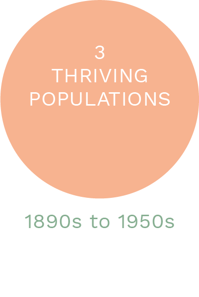 Thriving Populations.png