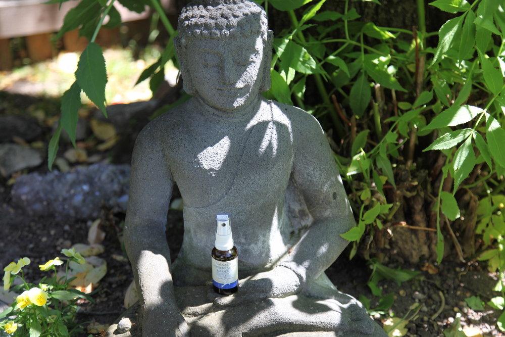 Naturschamane_Feng_Shui_Samanische_Seminare_Spirituelles_Coaching_Essenzen_Meditationen_Vasnaro_30.jpg