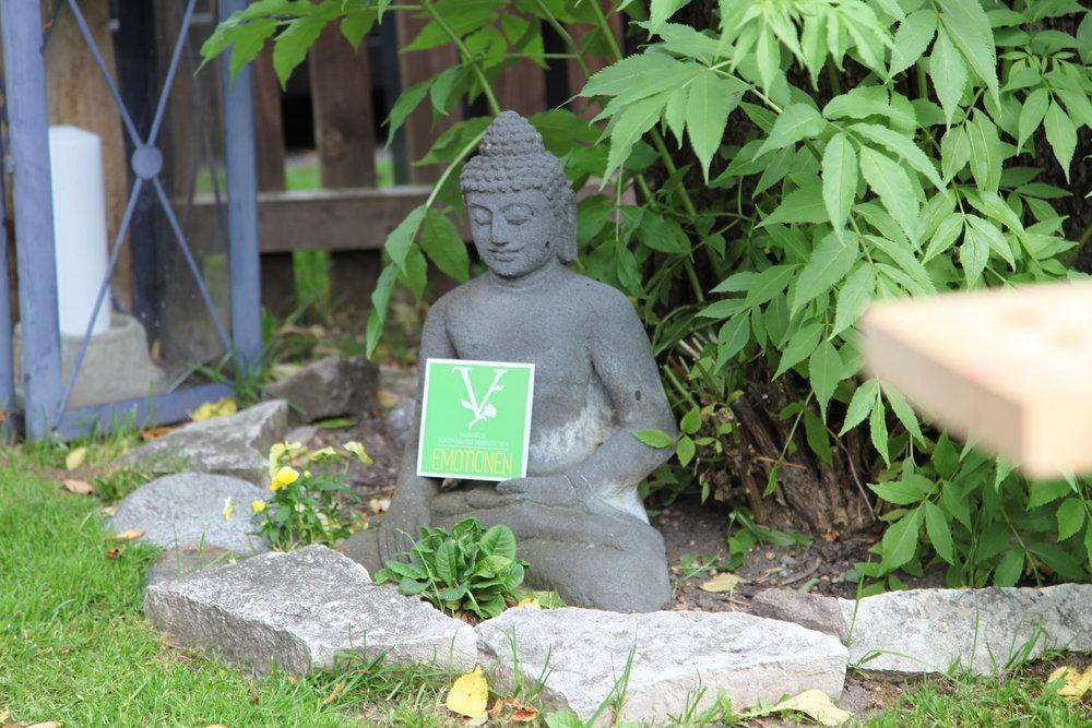 Naturschamane_Feng_Shui_Samanische_Seminare_Spirituelles_Coaching_Essenzen_Meditationen_Vasnaro_92.jpg