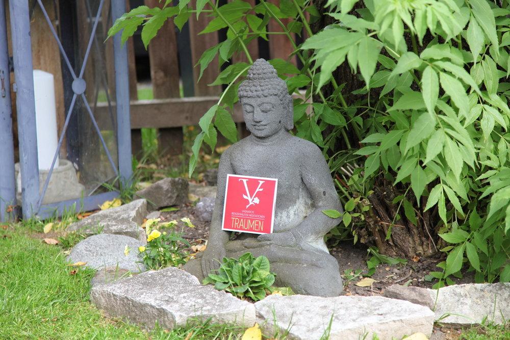 Naturschamane_Feng_Shui_Samanische_Seminare_Spirituelles_Coaching_Essenzen_Meditationen_Vasnaro_93.jpg