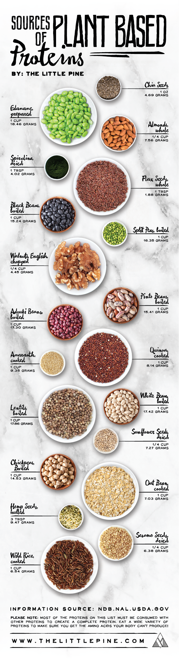 Plant-Protein-Featured-Image.png