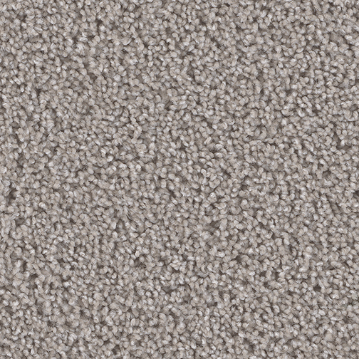 Secondary Bedroom Carpet   Stainmaster Pikes Peak